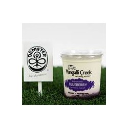 MUNGALLIA CREEK BLUEBERRY AND WHITE CHOCOLATE YOGHURT 500G