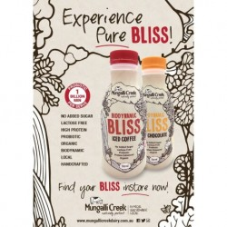MUNGALLI CREEK BLISS ICED COFFEE 500ML